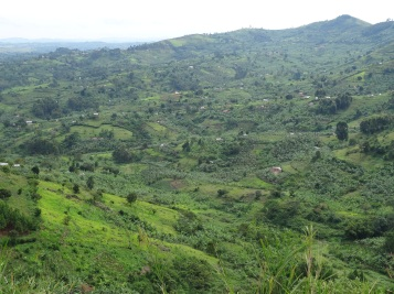 View across the lush, cultivated fields of Kinkiizi diocese from diocesan prayer mountain, November, Uganda. (c) Victoria Byrne