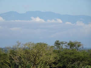 Looking across from the plains of the national park to Rwenzori mountains, SW Uganda